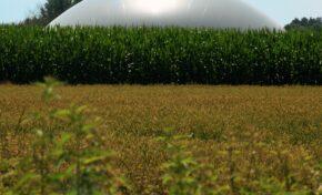 Biometano Market Strategic Outlook entro il 2026